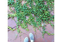Doğa / Doğa