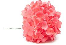 Compl. de flamenca coral / Pendientes, peinas, collares y pulseras de flamenca en color coral. Visita nuestra tienda para encontrar los complementos de flamenca en coral que combinen con tu traje.
