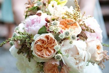 Bouquets / by Paul-Lissa BigDay
