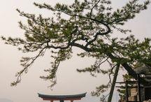 Japonia <3