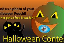 Halloween Contest / Send us a picture of your pooch and you could win a treat jar!!!! POST YOUR PICS ON https://www.facebook.com/CoopersWay!! Contest ends NOVEMBER 10TH