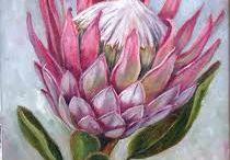 Flowers Proteas