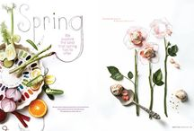 Food Styling | Illustrations