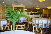 Budget Friendly Centerpiece Ideas / Here are a few good ideas on how to save money on centerpieces and perhaps create your own. #princetonwedding  #njwedding #princetonnj #princeton #flowers #flower #florist #gifts #balloons #balloondecor #balloondecorations #mmfmsmile #florist #smallbiz #eventdecor #princetondesigns #flowerdelivery #giftdelivery