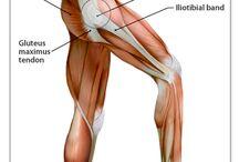 External snapping hip sendrom