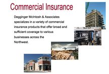 Insurance Services / Professional Insurance Services and Insurance Consulting.