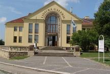 Lidická galerie / Lidická galerie se nachází uprostřed nových Lidic, asi 500 m od areálu muzea Památníku Lidice.