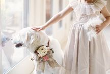 """Pets in Wedding / Now who can deny these adorable little faces?! The wedding day should include your furry little family members, because pets have the keys to our hearts like no other. So we're sharing the cutest wedding pet moments that will make you go, """"Awwwwww!"""""""