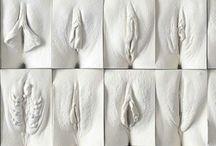 vagina se