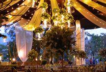 Wedding - carpas