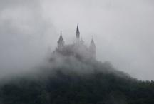 Kingdom of grey