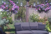 patio garden / by Backyard Gardener
