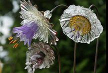 glass yard art / by Celia Herring