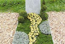 hrob / výsadba rostlin