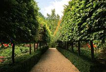 Garden Summerhouse BG Ideas & Design