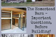 Homestead Buildings / by Going Green