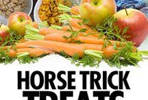 Paard yummie / Eten