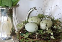 Flowers and Floral Arrangements / Spring & Easter