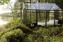 Outdoors / Inspiration for glass outside and in your natural space.