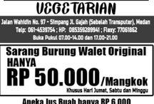 Sarang Burung Walet Berkualitas Di Medan
