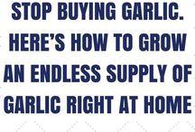 Rzeczy do kupienia