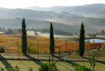 Tuscan landscapes / Tuscany and Chianti are known for their marvellous landscapes and the beauty of the scenery. Be it from its pool, from the tennis court, or from its gardens and terrassesVilla le Barone offers marvellous views on the rolling hills and on a picturest romanesque hamlet .