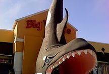 Florida Roadside Attractions / World's largest things and other roadside attractions in Florida to see on your next road trip.