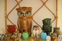 owl collections / by Cristal Ramirez-Whitaker