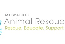 animal rescue / by Mark Lachman