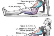 Sports- Exercises