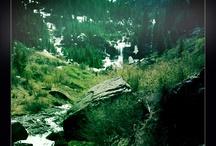 Telluride Hiking / http://www.visittelluride.com/plan-your-trip