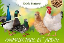 animaux / nourriture novealand