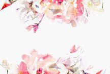 Λουλουδένιος