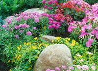 Garden / by Marcia Potter
