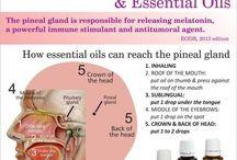 Essential Oils- Remedies for Insomnia