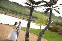 Pelican Lakes / The island at Pelican Lakes in Windsor Colorado is a beautiful place for a wedding.