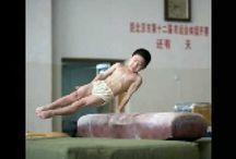 Gymnastics Pommel