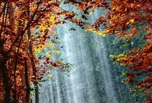 lovely time autum