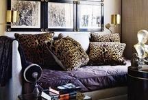 Leopard room / by Lauren