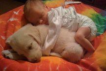 Baby bear and leia