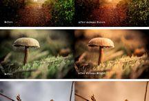 Photography:  Lightroom Presets