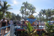 CocoCay / CocoCay is a private island owned by Royal Caribbean Cruise Lines and visited by cruise ships doing Bahamas and eastern Caribbean cruises. / by Rick Saltarelli