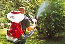 Pakiş İlaçlama / Böcek ve Haşere İlaçlama