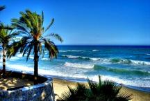 Rincones de Marbella / Disfruta de las imágenes más bellas de Marbella, municipio de Málaga y referente en la Costa del Sol. Ocio, diversión, playas y sobre todo Puerto Banús, un rincón que atrae la atención de turistas y también famosos.