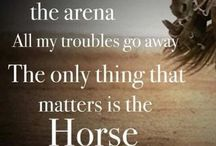 Horse quotes / Cute supporting horse quotes