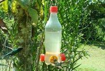 bebederos de colibries