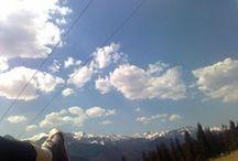 Meet me halfway / Best of.  Copyright: Lenka Zagarova. Repost with credits. More photos ➡ phlox-paniculata.tumblr.com