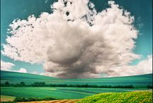 Clouds / by Shelly Usher