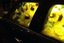 Glow 2014 Eindhoven