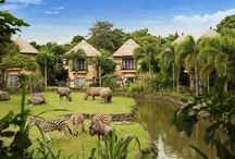 Bali Hotel & Resorts